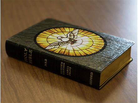 large-bible_02_NG-Services